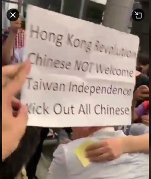 Image result for kick out chinese hk protests